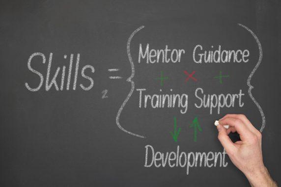 Skills-Mentoring