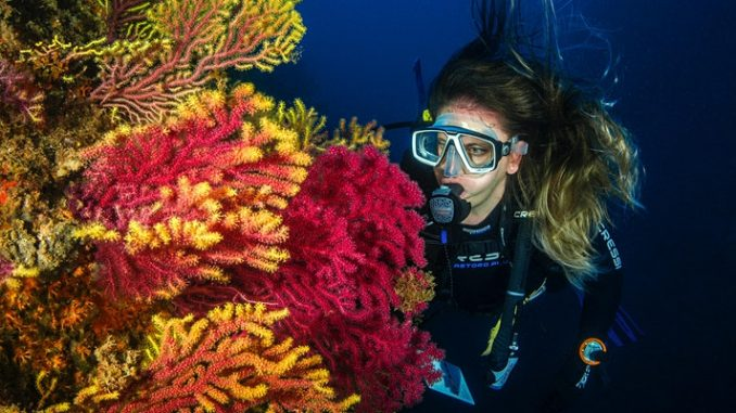 Underwater Astronaut